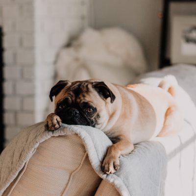 Relax a casa: come rigenerarsi