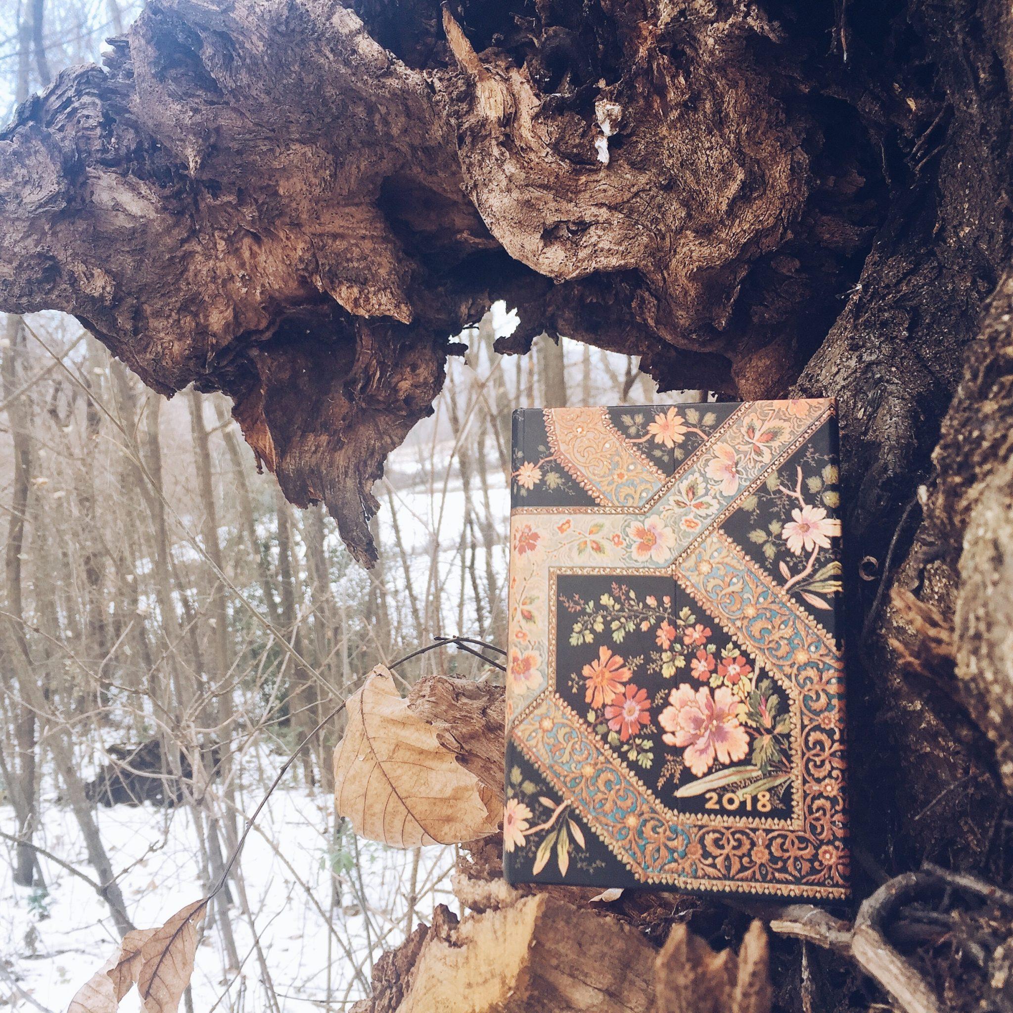 tenere un diario: una buona abitudine di crescita personale - foto di tatianaberlaffa.com