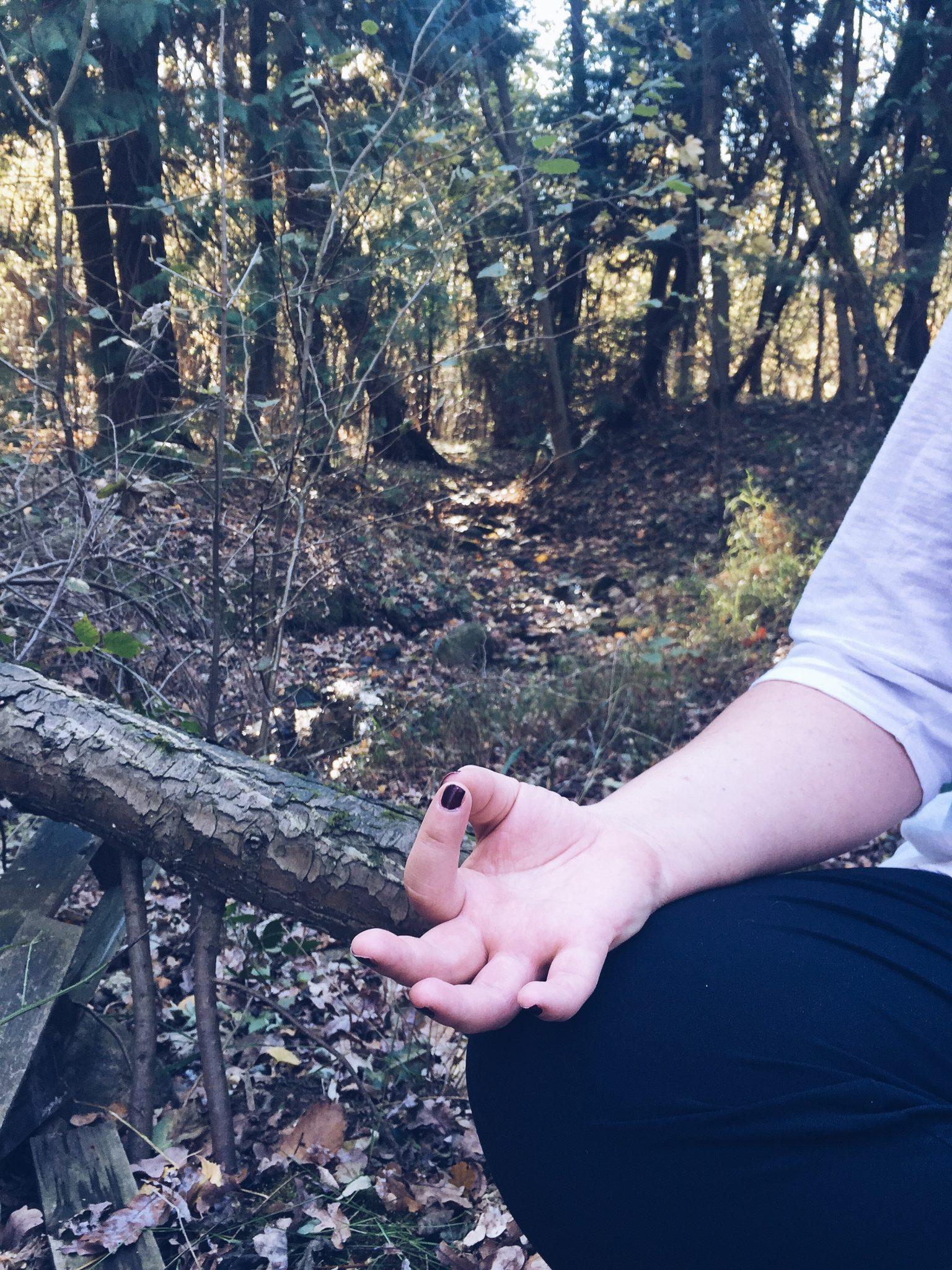 Gyan Mudra: il pollice e l'indice sono uniti durante la meditazione - foto di tatianaberlaffa.com