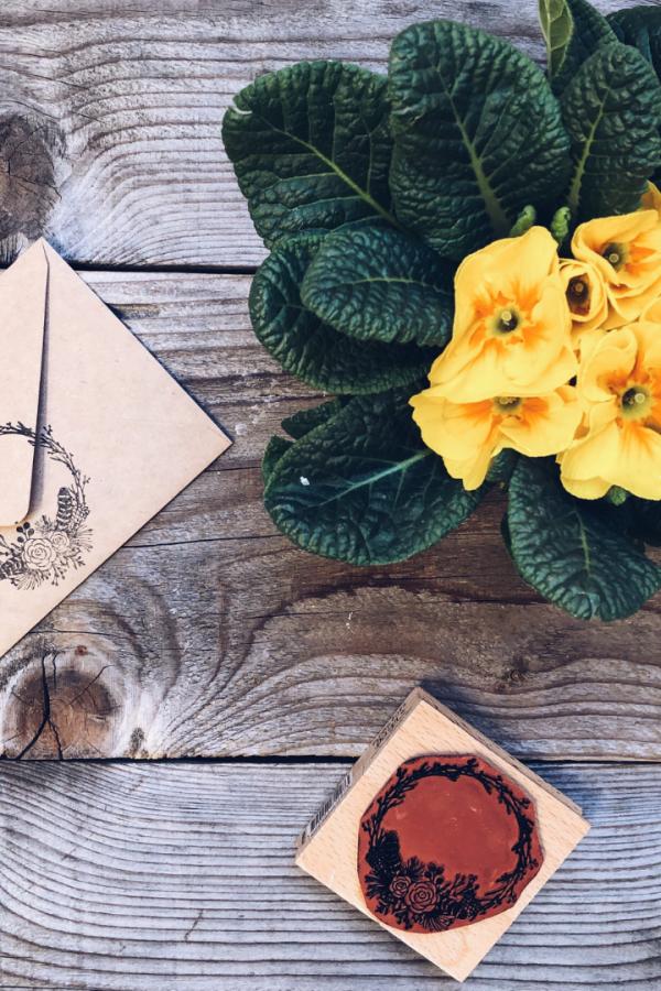 5 consigli per restare sempre aggiornata nel mondo del web - busta con timbro e piantina su tavolo di legno - tatianaberlaffa.com