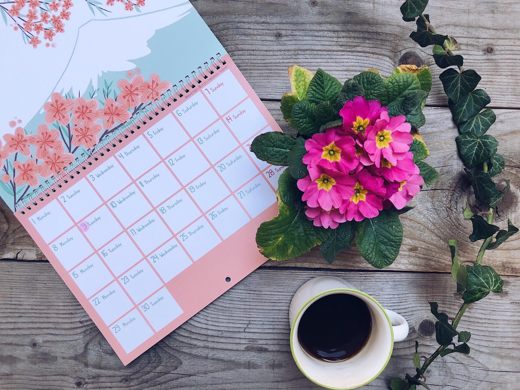 Come affrontare i dolori del ciclo mestruale - calendario con tazza e primula appoggiato su assi di legno - tatianaberlaffa.com